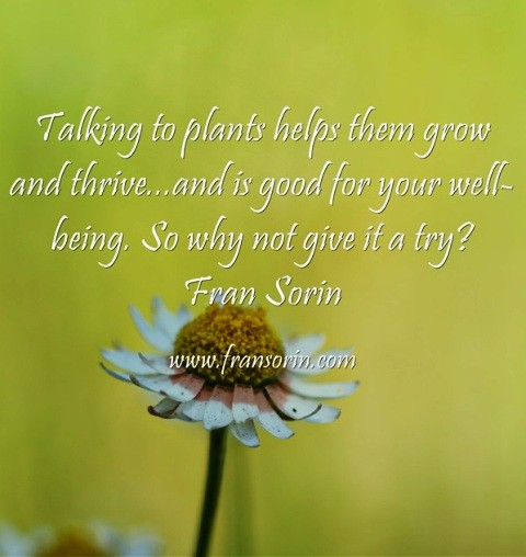 Talking With Your Plants